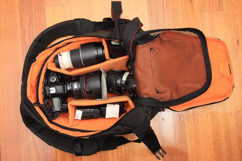 IMAGE: http://dawei.zenfolio.com/img/s5/v4/p131336245-4.jpg